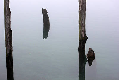 Photograph - Old Piling Reflections 8 by Mary Bedy
