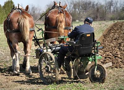 Old Plow And Work Horses Art Print by Dan Sproul