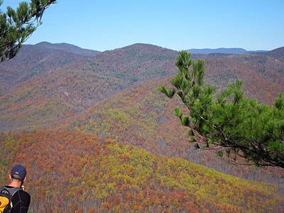 Oldrag Photograph - Old Rag Hiking Trail - 121222 by DC Photographer