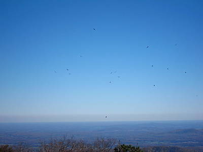 Trail Photograph - Old Rag Hiking Trail - 121236 by DC Photographer