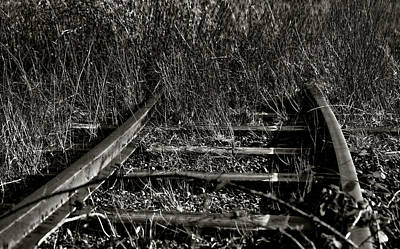 Photograph - Old Rails by Ron Roberts