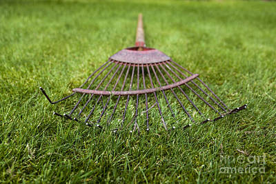 Photograph - Old Rake by Jim Orr
