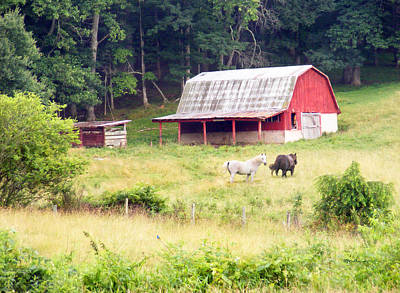 Photograph - Old Red Barn West Of Brevard Nc by Duane McCullough