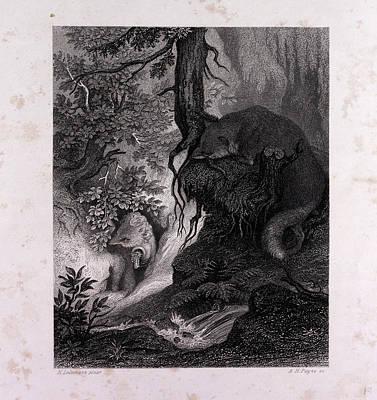 Old Reynards Treasure Art Print