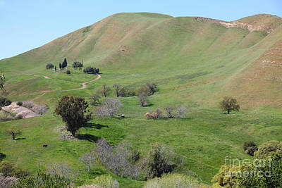 Old Rose Hill Cemetery Atop The Rolling Hills Landscape Of The Black Diamond Mines California 5d2231 Art Print
