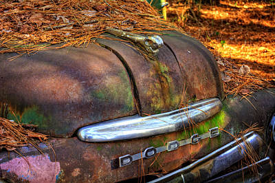 Pine Needles Photograph - Old Rusty Dodge by Greg Mimbs