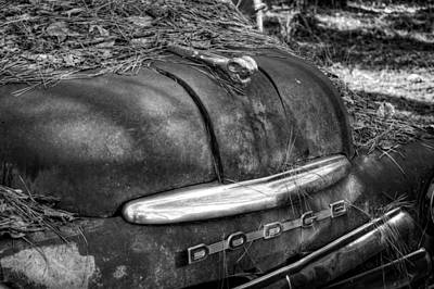 Pine Needles Photograph - Old Rusty Dodge In Black And White by Greg Mimbs