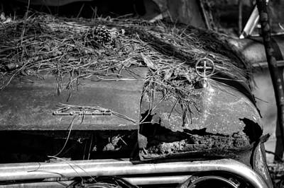 Pine Needles Photograph - Old Rusty Mercury Comet In Black And White by Greg Mimbs