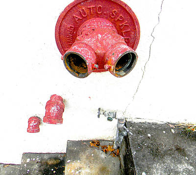 Photograph - Old School Fire System by Christy Usilton