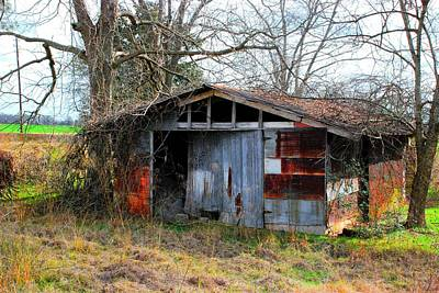 Old Shed 19 Art Print by Andy Savelle
