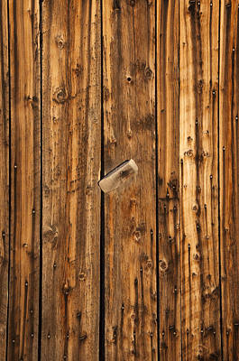 Photograph - Old Shed Door by Eric Rundle