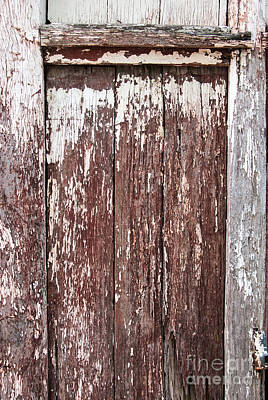 Digital Art - Old Shed Door by Fran Woods