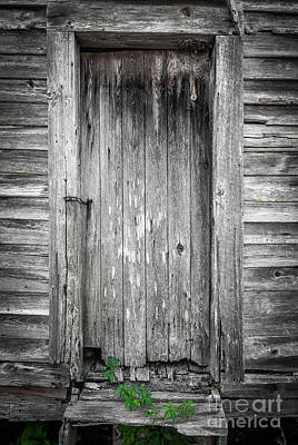 Old Shed Door Art Print by Marion Johnson