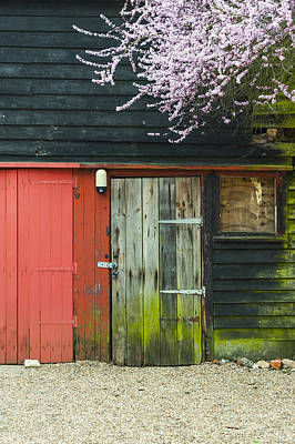 Old Shed Print by Svetlana Sewell