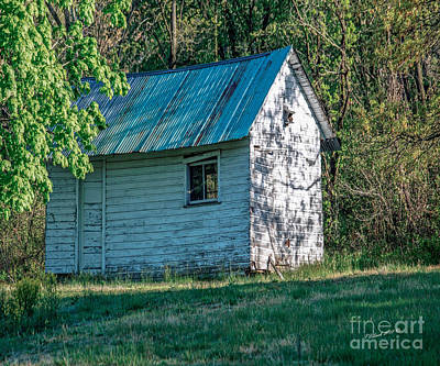 Old Shed Art Print by Timothy Clinch