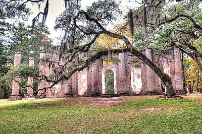 Photograph - Old Sheldon Church - Bending Oak by Scott Hansen