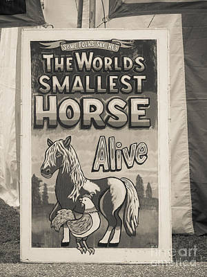 Carnival Wall Art - Photograph - Old Sideshow Poster by Edward Fielding