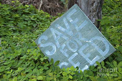Photograph - Old Sign by Jackie Farnsworth