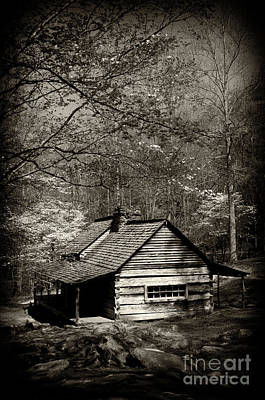 Log Cabins Photograph - Old Smoky Mtn Cabin by Paul W Faust -  Impressions of Light