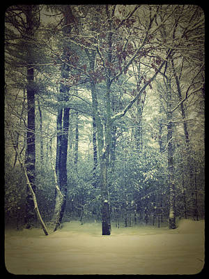 Photograph - Old Snow by Frank Winters