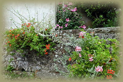 Photograph - Old Stone Wall by Carla Parris