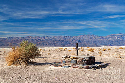 Animal Portraits - Old Stovepipe Wells Death Valley National Park by Fred Stearns