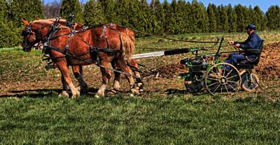 Draft Horses Photograph - Old Time Horse Plowing by Dan Sproul
