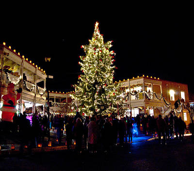 Luminaria Photograph - Old Town Christmas Tree by Don Durante Jr