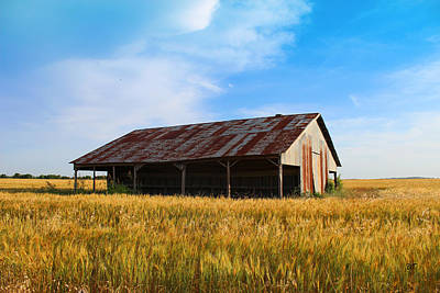 Photograph - Old Town Living - Farm by Brooke Fuller