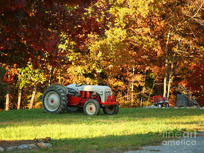 Old Tractor In A Carolina Fall Art Print by Suzi Nelson