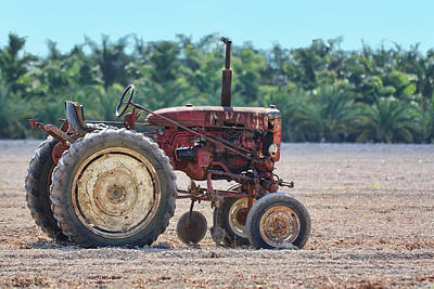 Photograph - Old Tractor by Rudy Umans