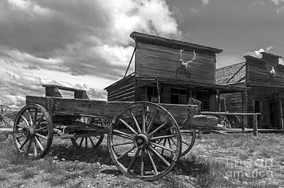 Buffalo Photograph - Old Trail Town by Wildlife Fine Art