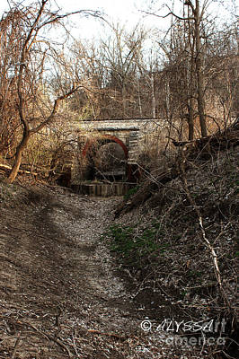 Alyssa Photograph - Old Train Bridge by Alyssa Rogers