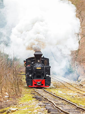 Old Train Mocanita Original by Marius Ticala