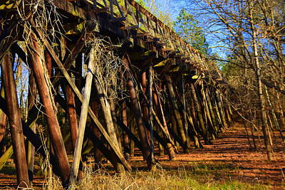 Photograph - Old Train Trestle by Lisa Wooten
