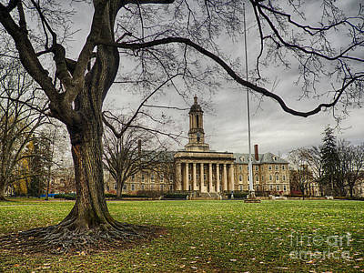 Old Tree At Old Main Art Print by Mark Miller