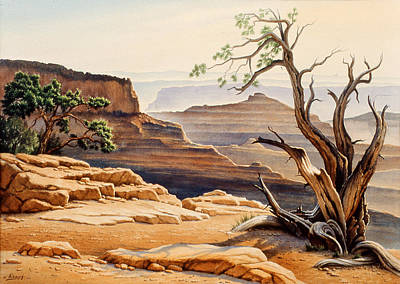 Canyons Painting - Old Tree At The Canyon by Paul Krapf