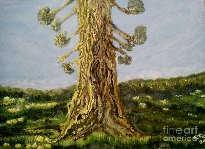 Old Tree In Spring Light Art Print