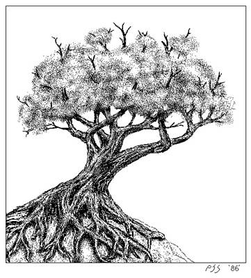 Painting - Old Tree  Macpaint 1986 by Peter J Sucy