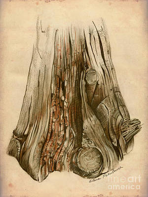 Color Image Painting - Old Tree Stump - Sketch Chalk Charcoal Sepia - Elena Yakubovich by Elena Yakubovich