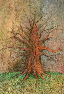 Creativity Drawing - Old Tree by Wojtek Kowalski