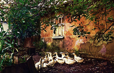 Old Ukrainian Village Print by Julie Palencia
