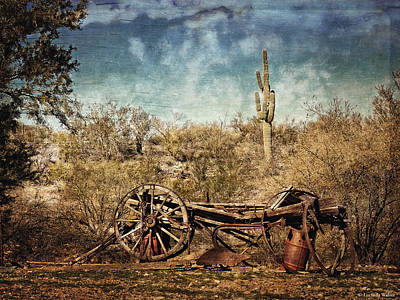 Photograph - Old Wagon by Lucinda Walter