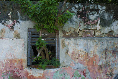 Photograph - Old Wall Nassau Bahamas Img 6914 by Greg Kluempers