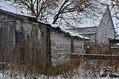 Indiana Photograph - Old Weathered Barn And Tree by Amy Lucid
