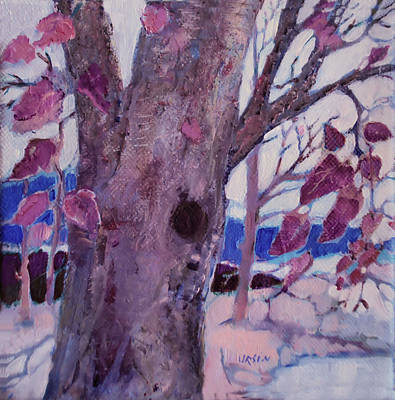 Painting - Old Weathered Tree by Diane Ursin