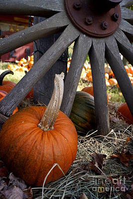 Photograph - Old Wheel Pumpkin by Kerri Mortenson