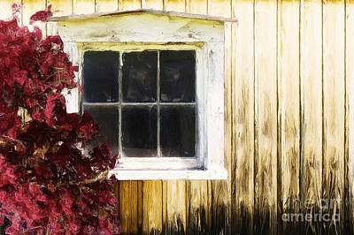 Old White Window Art Print