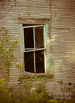 Photograph - Old Window by Alana Ranney
