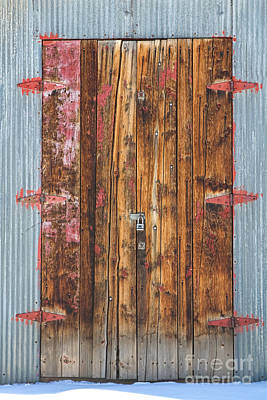 Photograph - Old Wood Door With Six Red Hinges by James BO Insogna